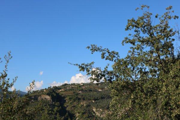 Dolceacqua (IM) - Località Morghe