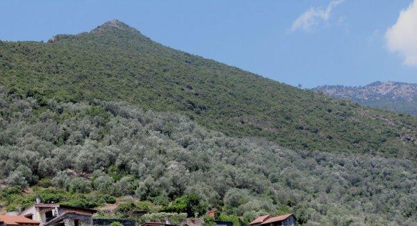 Rocchetta Nervina (IM): sopra il paese, dal lato del rio Oggia