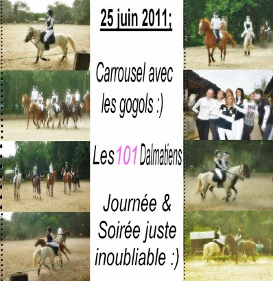 Carrousel 2011 .