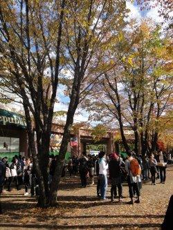 23 Novembre - Tokyo University of Foreign Studies