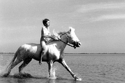 CRIN BLANC  1953