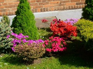 Décorations florales. Photos de Madame Radoslava Palová (Russie).