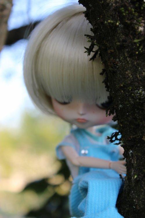 « Ecouter comme un arbre vaut mieux que tout. » [Jean Chalon]