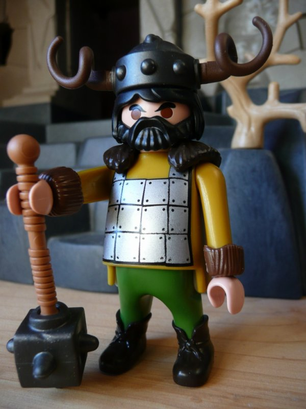 CUSTOM VIKING NAIN ...