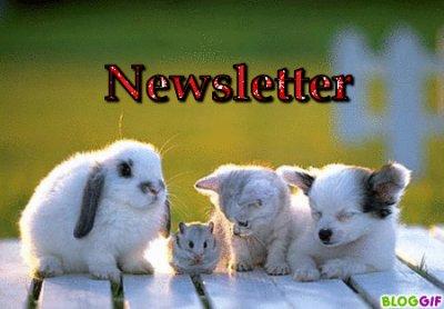 :) newsletter :)