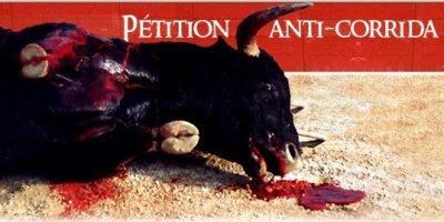 La coridda : l'enfer des taureaux