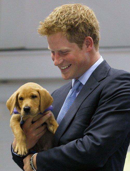 Photos divers du Prince Harry ...