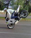 Photo de achraf-biker