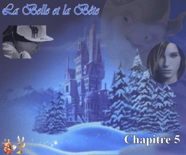 La Belle et la Bête (par Laura67) (5)