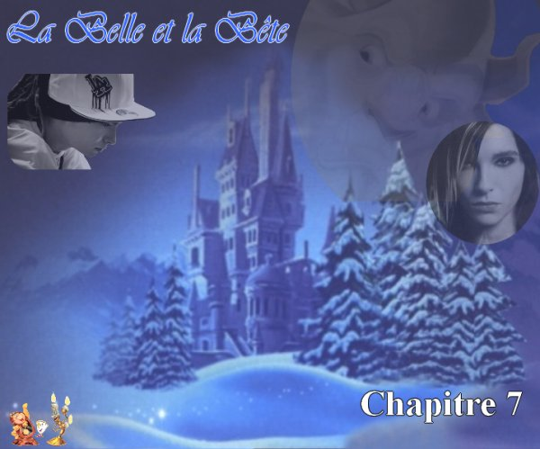La Belle et la Bête (par Laura67) (7)
