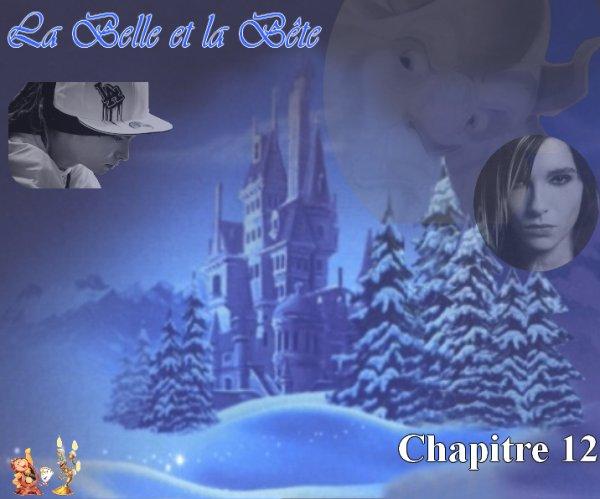 La Belle et la Bête (par Laura67) (12)