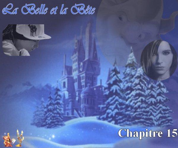 La Belle et la Bête (par Laura67) (15)