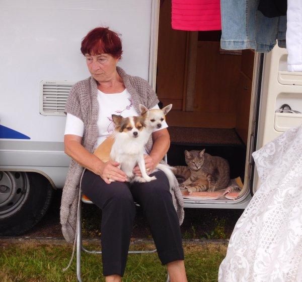 dans ma série photos de brocantes une précision le chat à l'entrée du camping car est un animal trouvé et adopté par cette dame et depuis il vit sans contrainte avec les deux chiens une belle histoire
