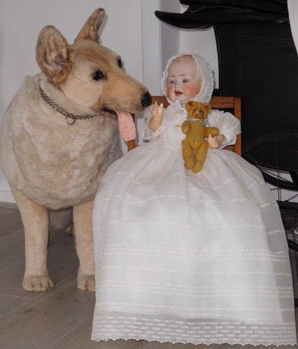 un caractère de 50cm sur lequel j'ai craqué pour ses yeux bleus pâles et son teint clair ses petites fossettes dans une robe de baptème et chapeau achetés cette année ...le chien en taille réel est ancien et possède une fourrure de laine incroyablement épaisse je l'adore !!!
