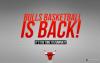 Chicago Bulls, la bonne année ?