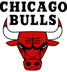 Chicago Bulls 6