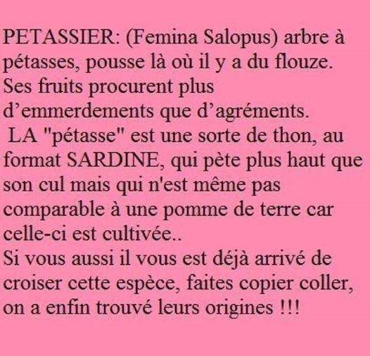 Petassier ;)