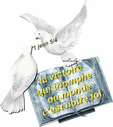 1 Jean 5:4