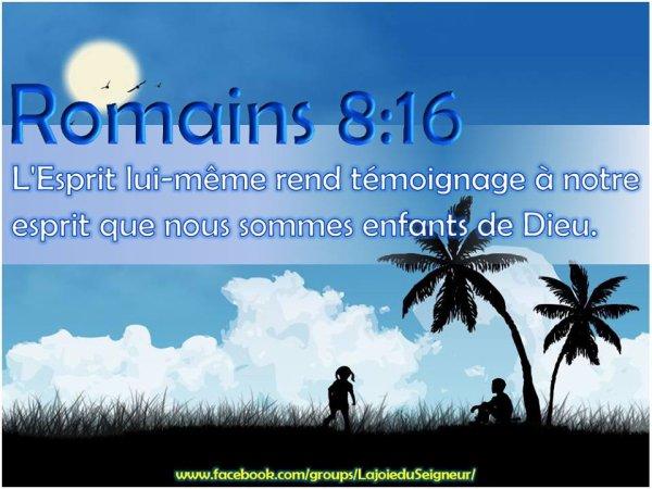 Romains 8;16