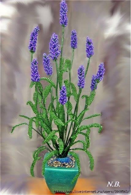 Fleur de Lavanda