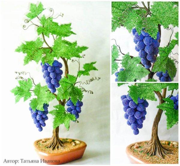 Arbre de vigne