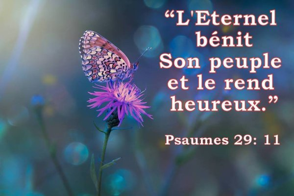 Psaumes 29;11