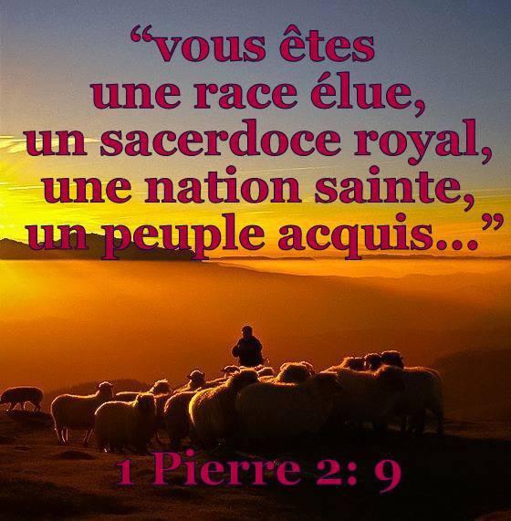 1 Pierre 2:9