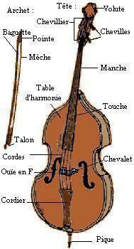 Les différentes parties de la contrebasse et de l'archet