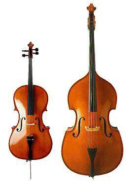 La différence entre le violoncelle et la contrebasse