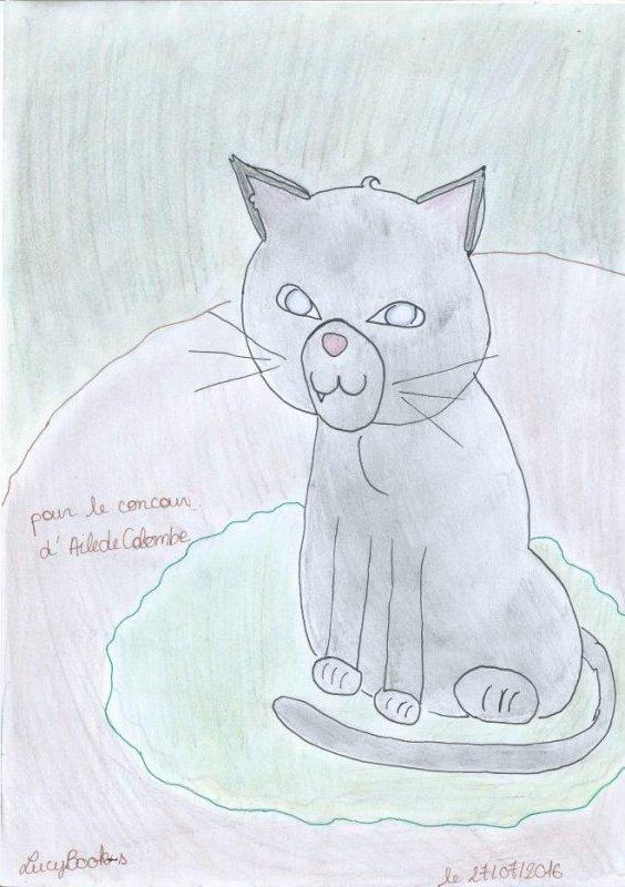 """Résultat du """"Concoure Cat!"""""""