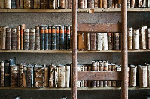 """""""Chacun d'entre nous est destiné à rencontrer un livre, son livre. Un seul et unique livre qui l'attend quelque part, dans les rayons d'une librairie. Un livre qui donnera un sens à son existence, éclairera sa route, fera écho à ses douleurs, à ses espoirs, lui indiquera le chemin à emprunter, les valeurs à préserver et l'accompagnera alors jusqu'à la mort. C'est cela, un livre lumière."""