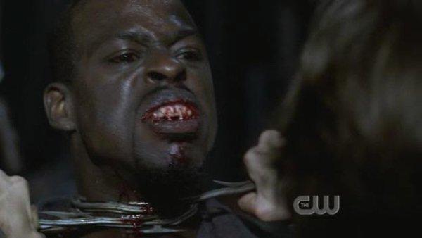 Chapitre 4 : La chasse aux vampires .