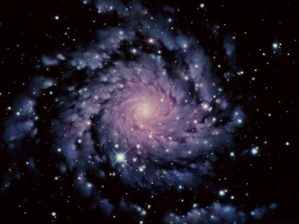 """""""Retrouver dans un sourire toutes les lois de l'univers"""" (Calogero)"""