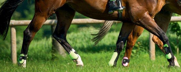 Matériel de protection à cheval ou pour son cheval