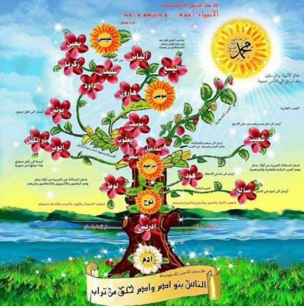 Chapitre 3 l'Histoire des prophète