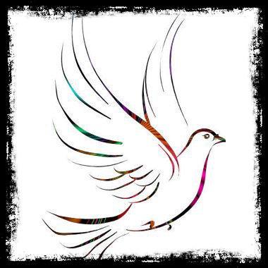 jolie colombe