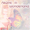 Akame-in-Wonderland