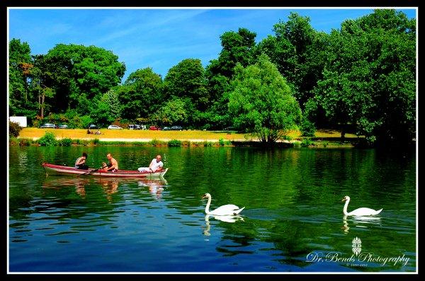Lac de vincennes
