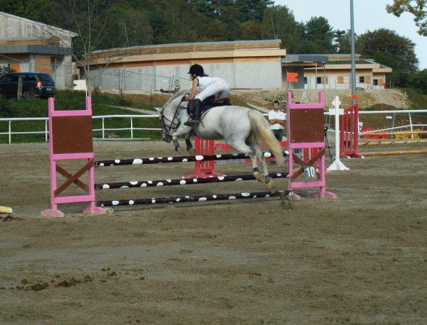 Bienvenue sur M-ateriel-Equitation