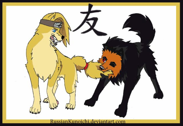 Blog sur l'Akatsuki,Naruto ...ect...