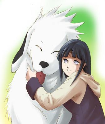 Kiba et Akamaru plus Hinata