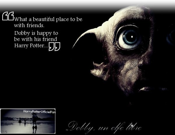 Bienvenue dans le monde d'Harry Potter