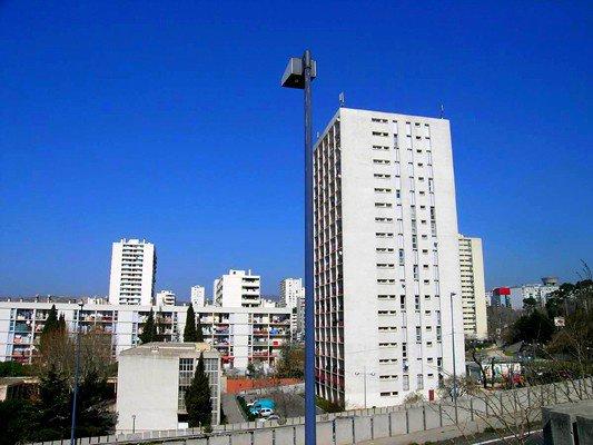 Picon City 13o14