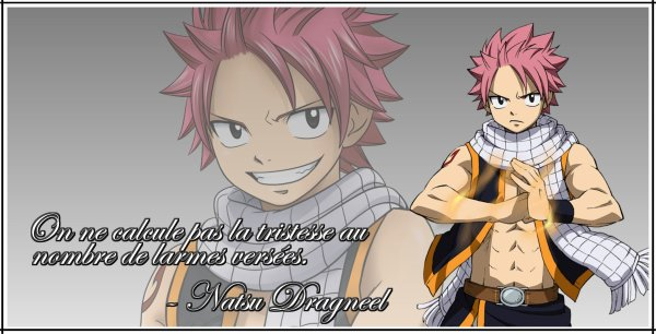 Montage 7 : Fairy Tail 2