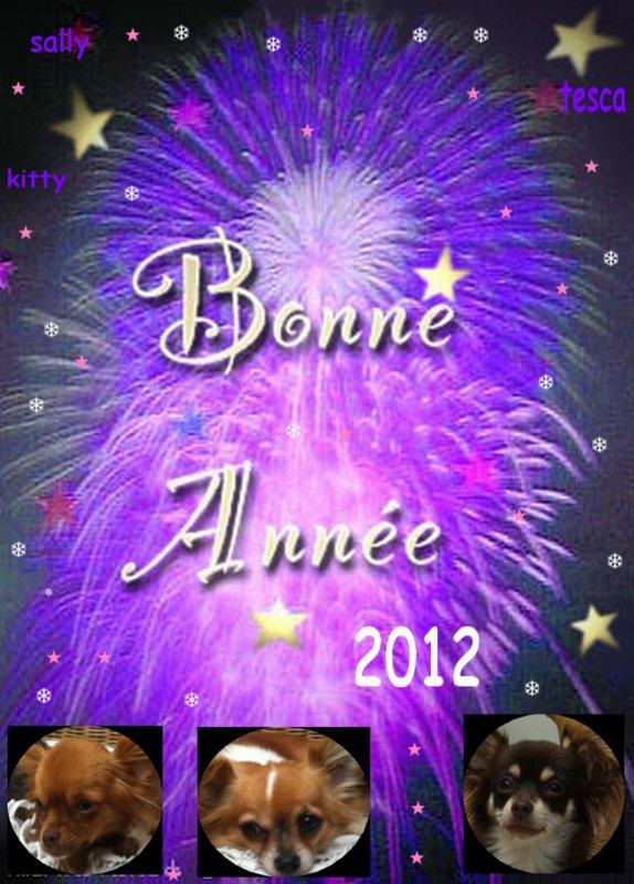 nous vous souhaitons une bonne et heureuse année 2012