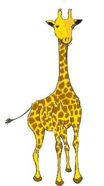 La girafe en couleur dessins - Dessin de girafe en couleur ...