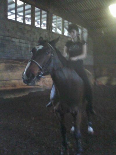 Balance ton coeur par dessus l'obstacle , et le cheval le suivra. L'air du paradis souffle entre les oreilles d'un cheval.