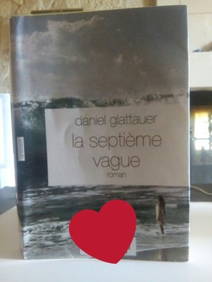 La septième vague (T.2), Daniel Glattauer