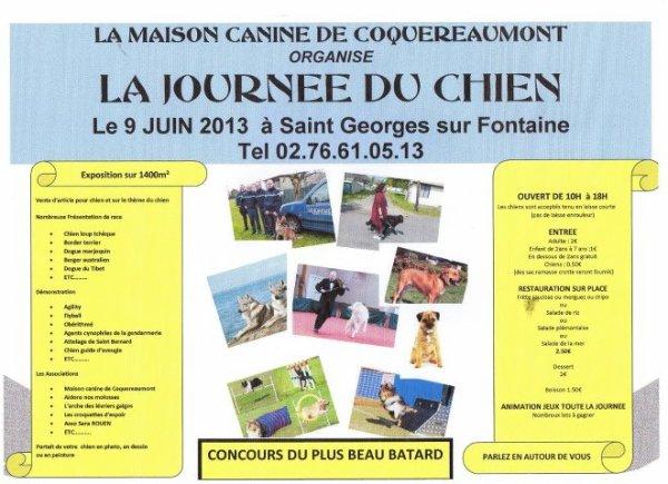 """9 juin """" journée du chien"""" ( département 76)"""