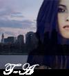 Photo de Twilight-autodestruction